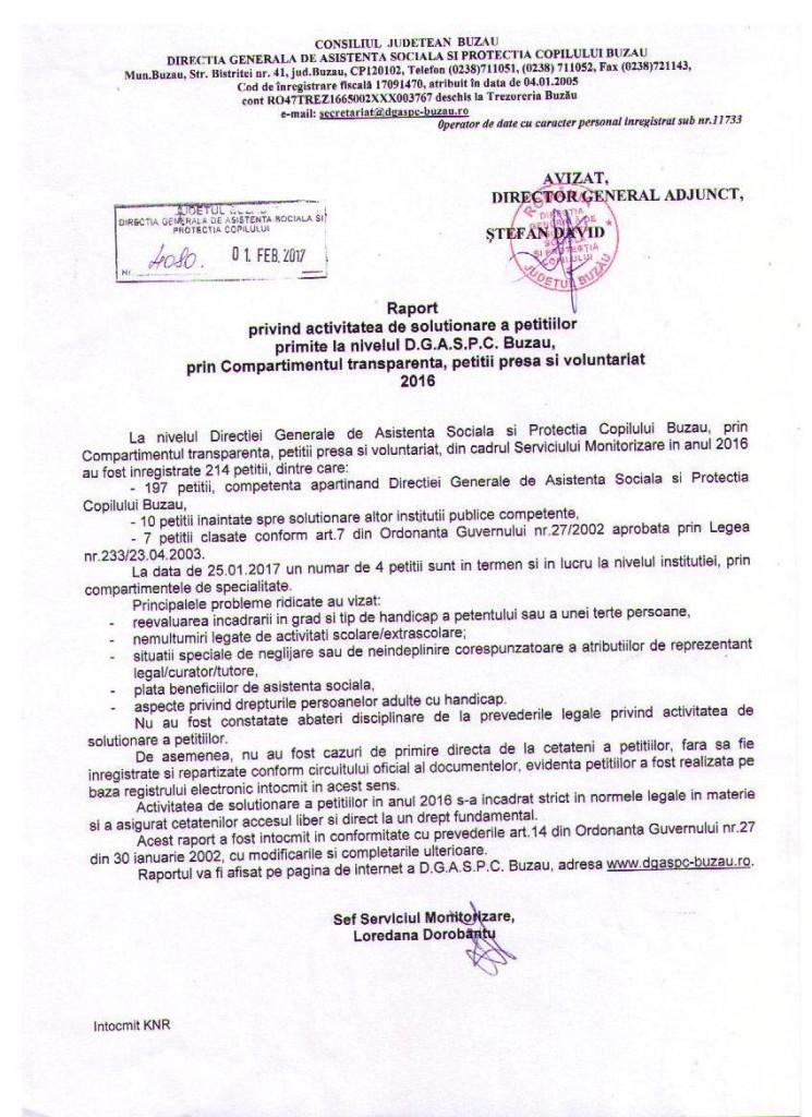 raport petitii 2016